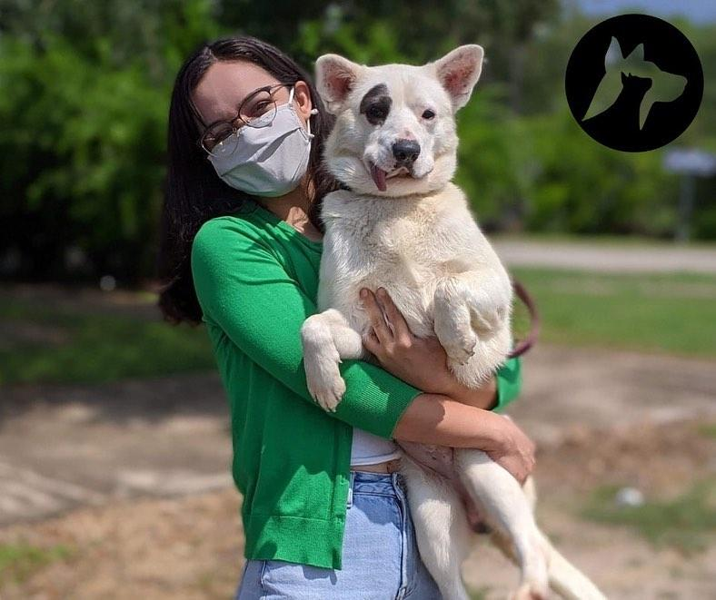 Sugar House Business: Best Friends Animal Society